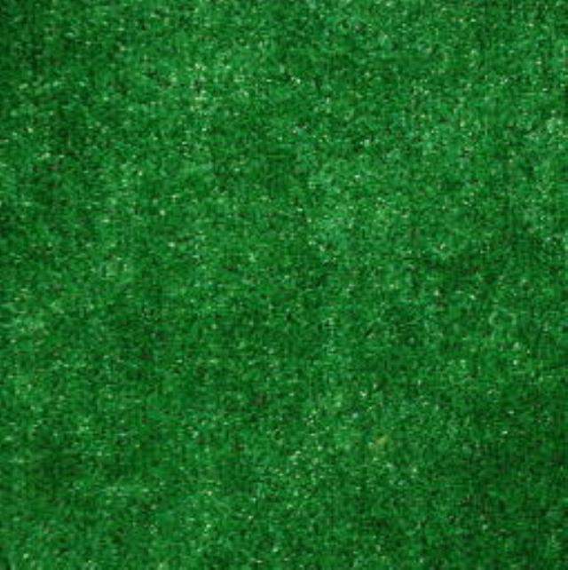 Where to find OUTDOOR CARPET GREEN PER SQ FT in Seattle