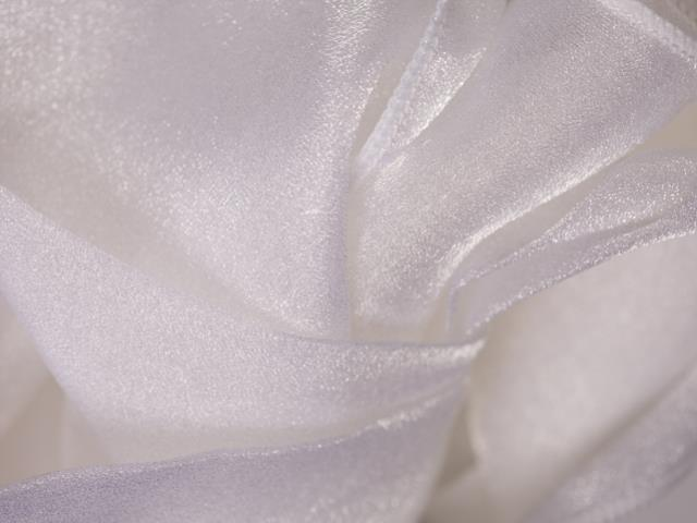 Where to find CLOTH SASH ORGANZA WHITE in Seattle