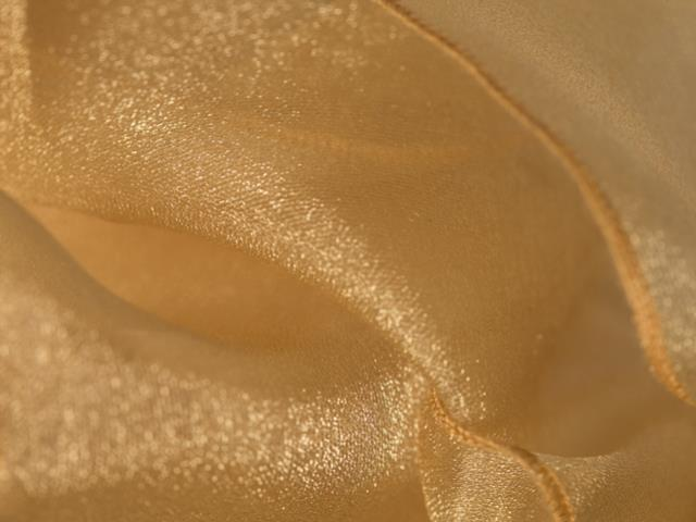Where to find CLOTH SASH ORGANZA GOLD in Seattle